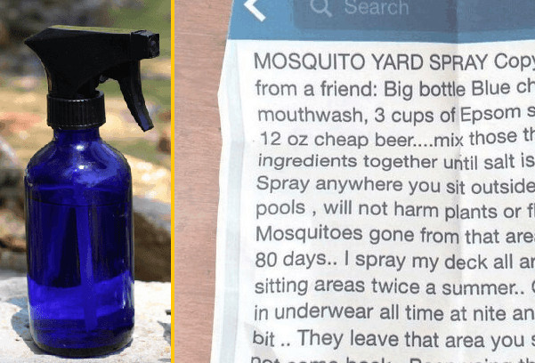 Best ideas about DIY Mosquito Yard Spray . Save or Pin How To Make Your Own 3 Ingre nt Mosquito Yard Spray That Now.