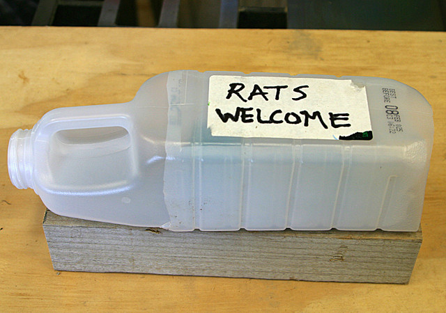 Best ideas about DIY Mouse Poison . Save or Pin Rat bait station 8 Now.