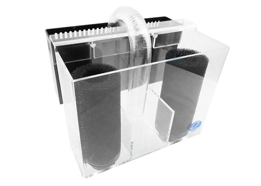 Best ideas about DIY Overflow Box . Save or Pin Aquarium Overflow Pre Filter Box Eshopps PF 1800 Now.