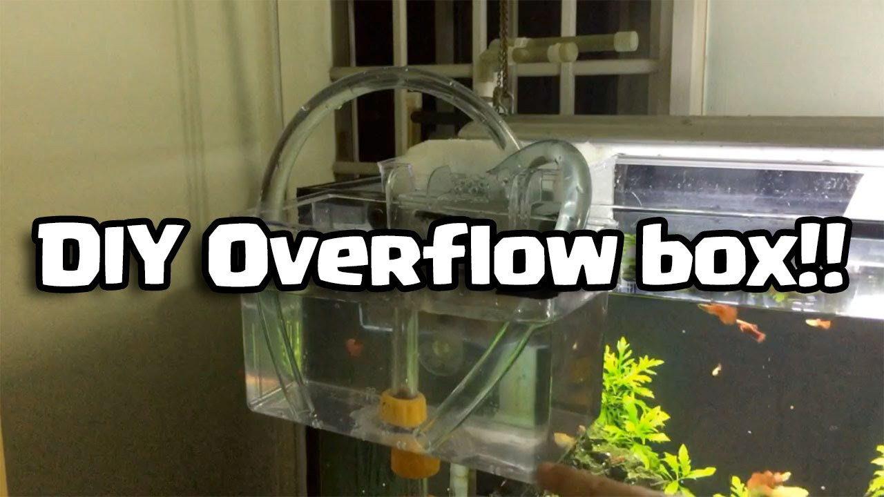 Best ideas about DIY Overflow Box . Save or Pin DIY Overflow box Do it yourself Now.