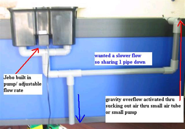 Best ideas about DIY Overflow Box . Save or Pin want to know how to DIY overflow box or pipe DIY Forum Now.
