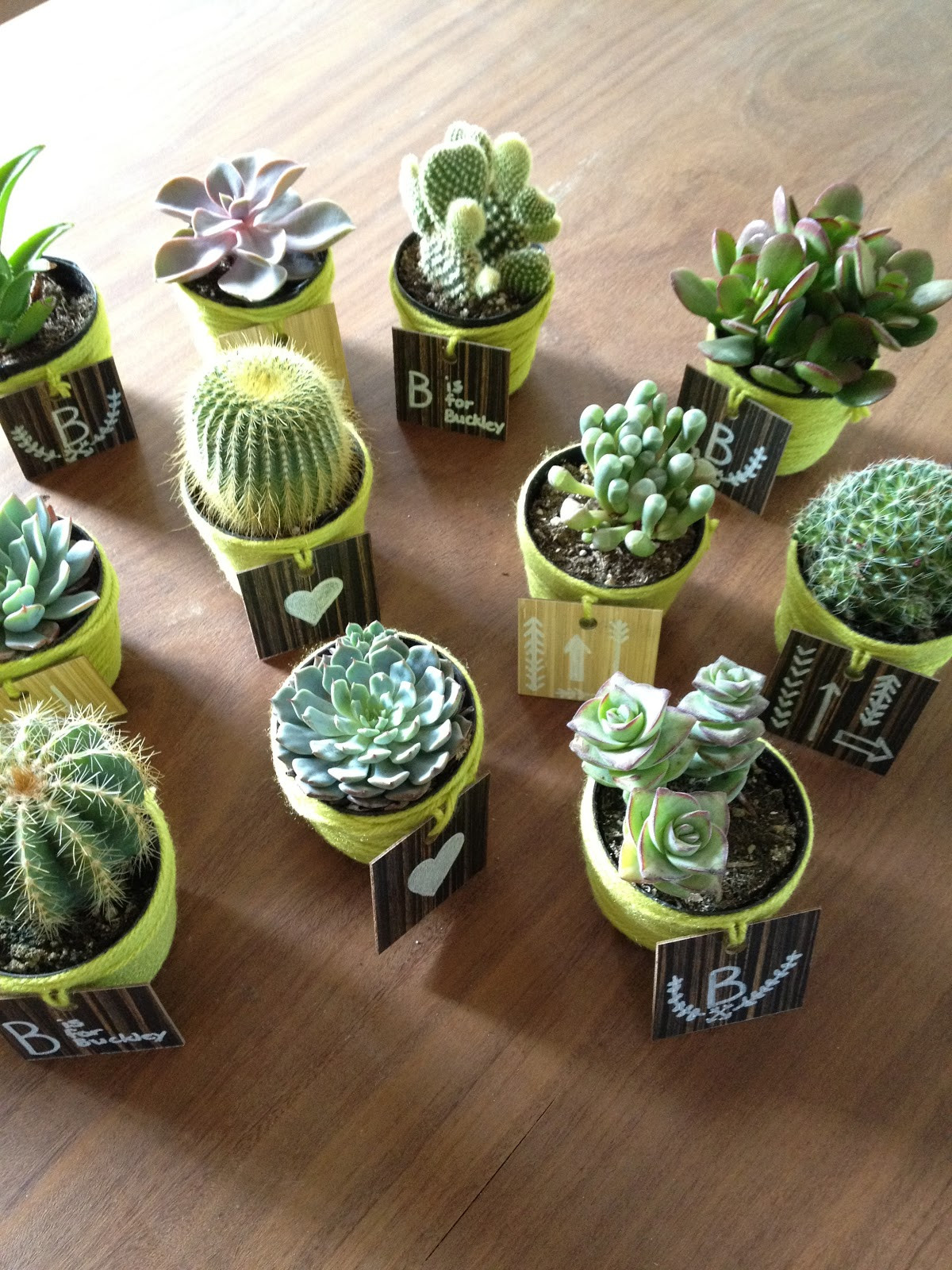 Best ideas about DIY Party Favors . Save or Pin diy party favors Now.