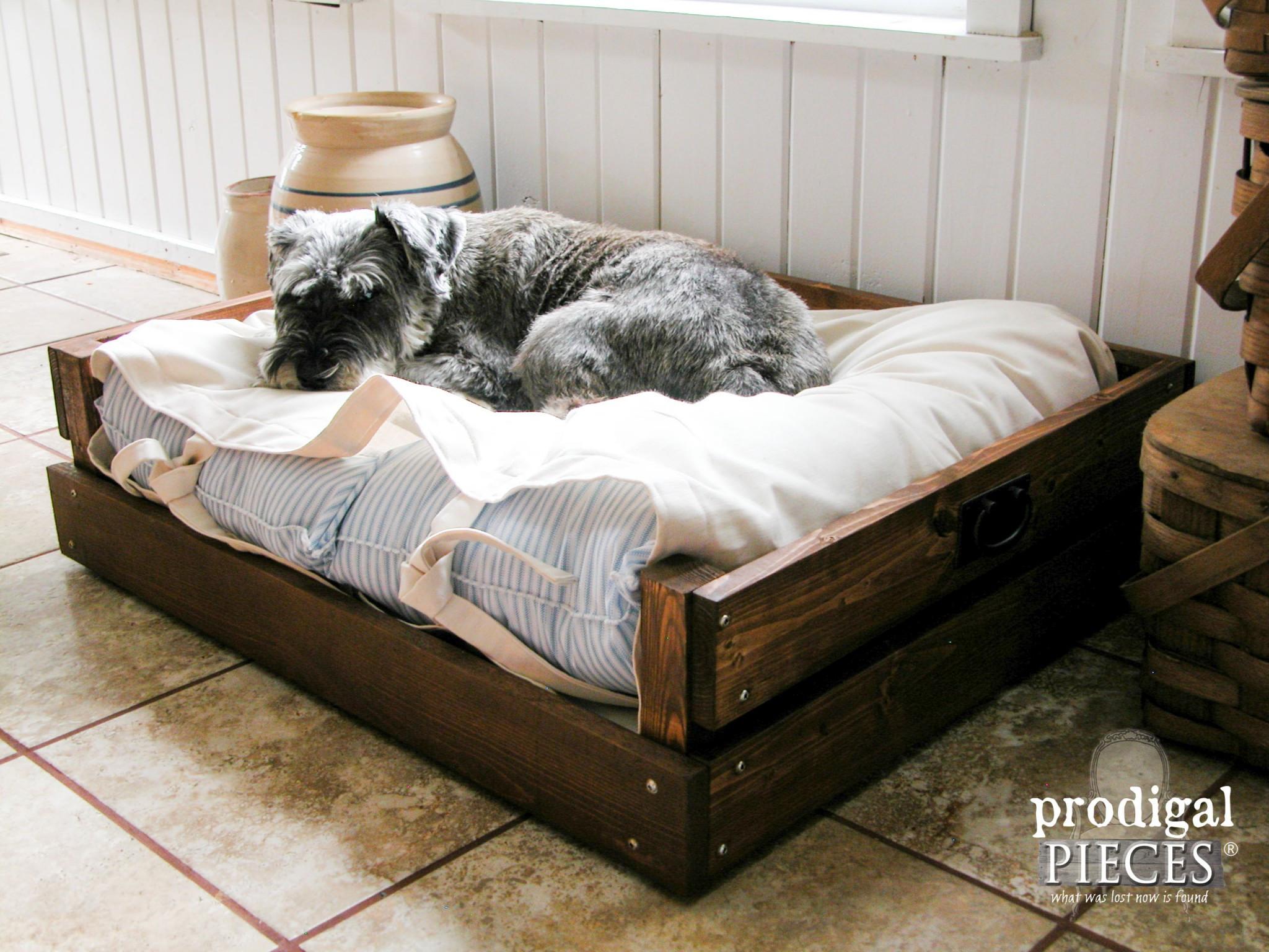 Best ideas about DIY Pet Beds . Save or Pin Pet Bed DIY Building Plans & Tutorial Prodigal Pieces Now.