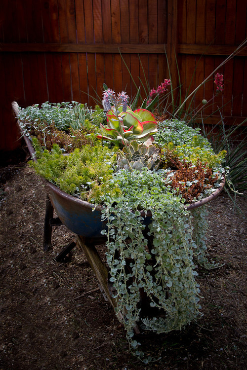 Best ideas about DIY Planter Ideas . Save or Pin 7 DIY Planter Ideas You Probably Never Thought PHOTOS Now.