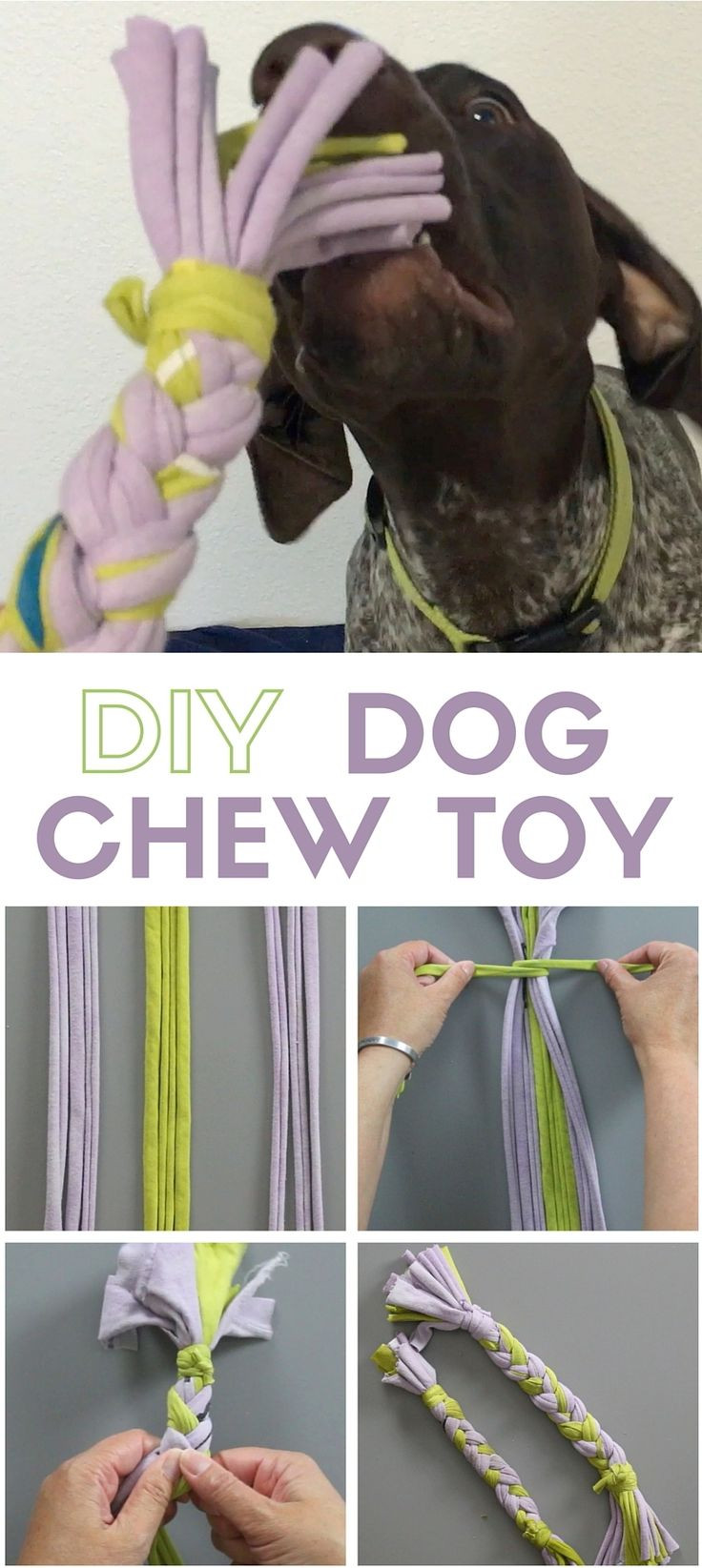 Best ideas about DIY Puppy Teething Toys . Save or Pin 17 Best ideas about Puppy Teething Toys on Pinterest Now.