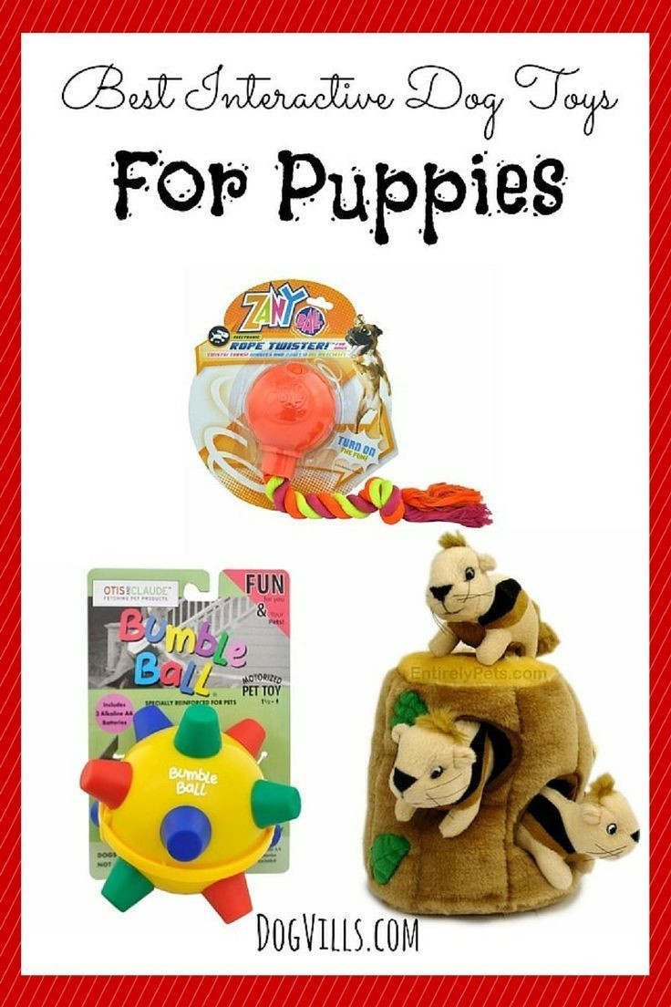 Best ideas about DIY Puppy Teething Toys . Save or Pin Best 25 Puppy teething toys ideas on Pinterest Now.