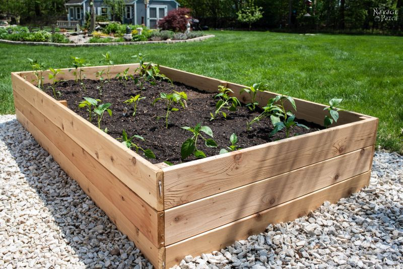 Best ideas about DIY Raised Beds Garden . Save or Pin DIY Raised Garden Beds Tutorial The Navage Patch Now.