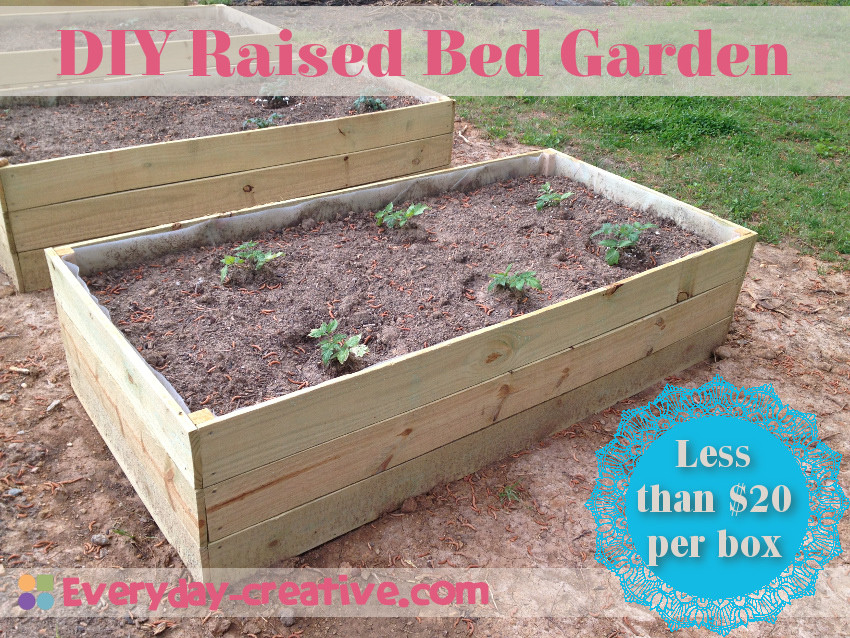 Best ideas about DIY Raised Garden Beds Cheap . Save or Pin Raised Bed Garden Quick and Cheap Everyday Creative Now.