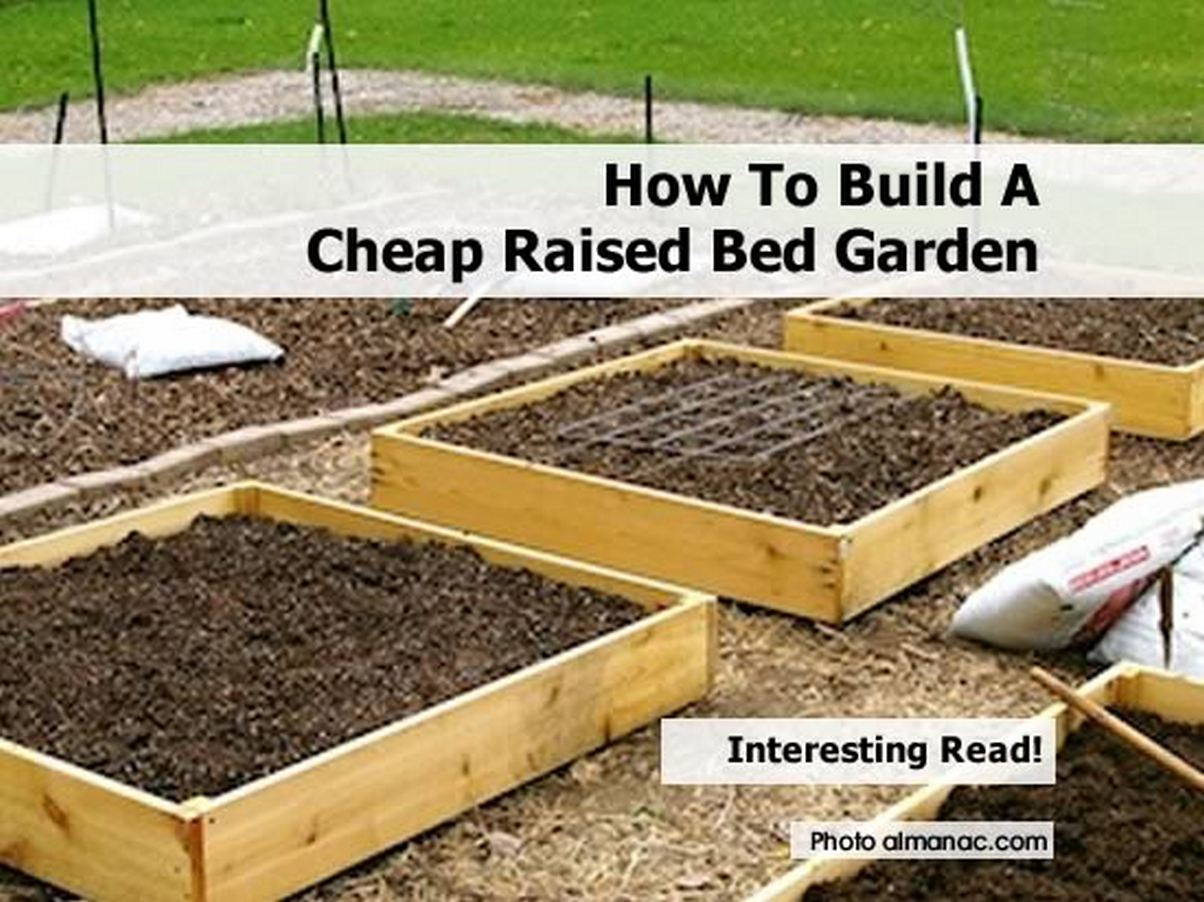 Best ideas about DIY Raised Garden Beds Cheap . Save or Pin How To Build A Cheap Raised Bed Garden Now.