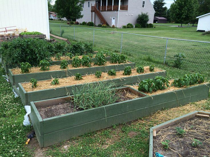 Best ideas about DIY Raised Garden Beds Cheap . Save or Pin Raised garden beds DIY Cheap Ass Now.