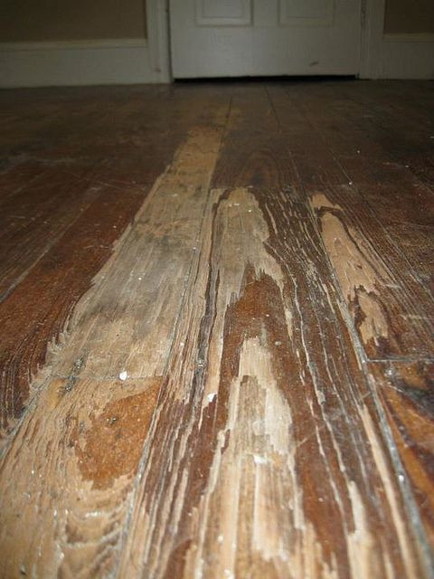 Best ideas about DIY Refinish Wood Floor . Save or Pin 25 best ideas about Hardwood floor refinishing on Pinterest Now.