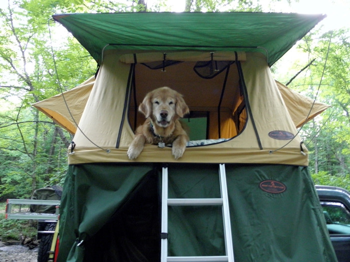 Best ideas about DIY Roof Top Tents . Save or Pin tent diy tent on a trailer – Page 5 – pact Camping Concepts Now.