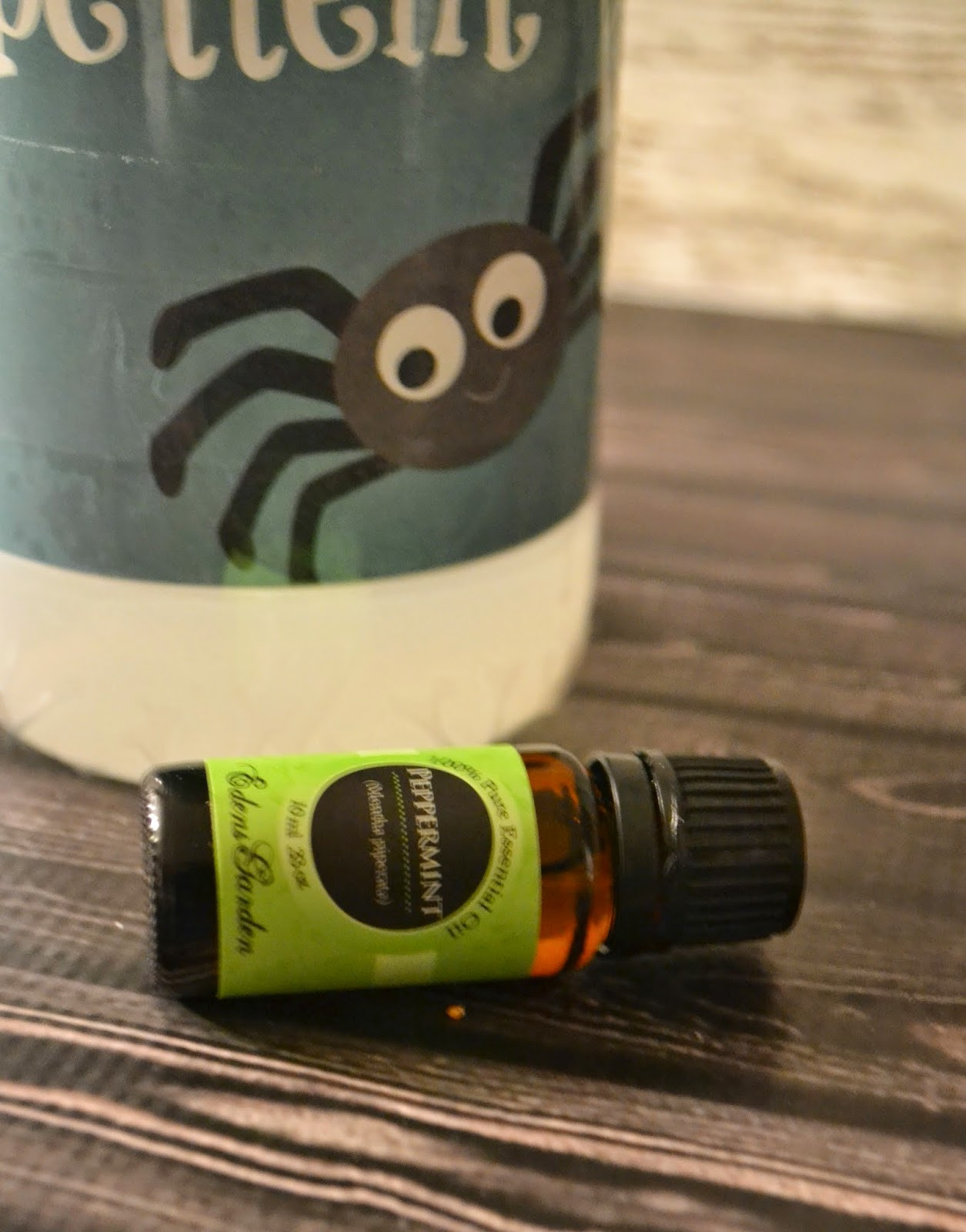 Best ideas about DIY Spider Killer . Save or Pin Homemade Non Toxic Spider Repellent DIY Now.