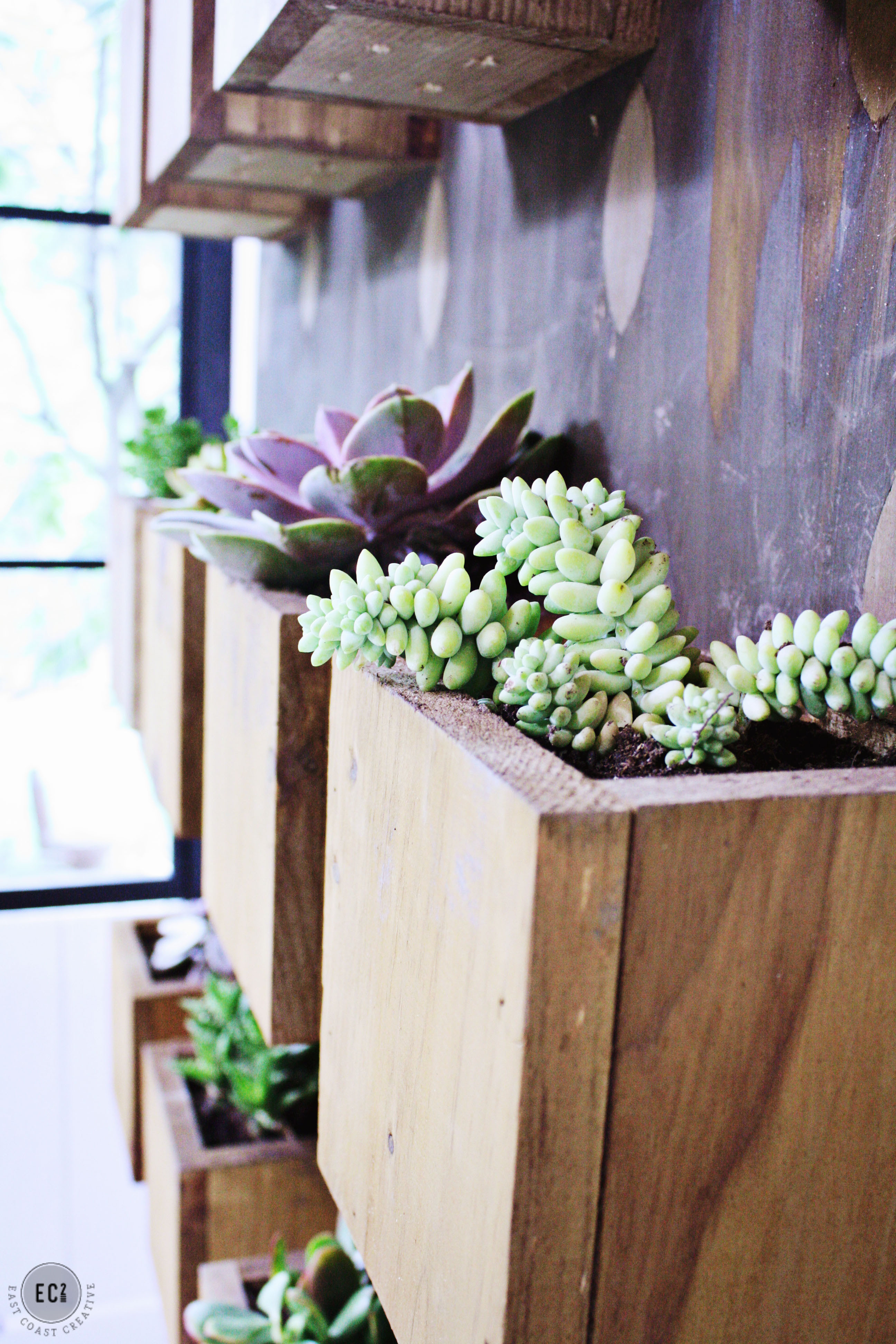 Best ideas about DIY Succulent Wall . Save or Pin DIY Garden Wall – Urban Sunroom Makeover Now.