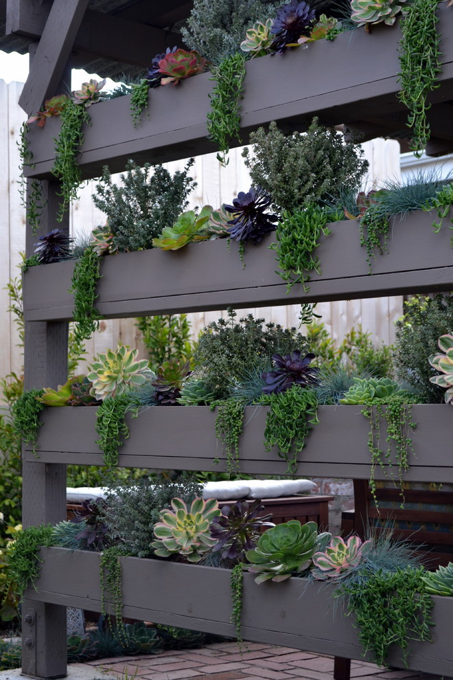 Best ideas about DIY Succulent Wall . Save or Pin 70 Indoor And Outdoor Succulent Garden Ideas Shelterness Now.