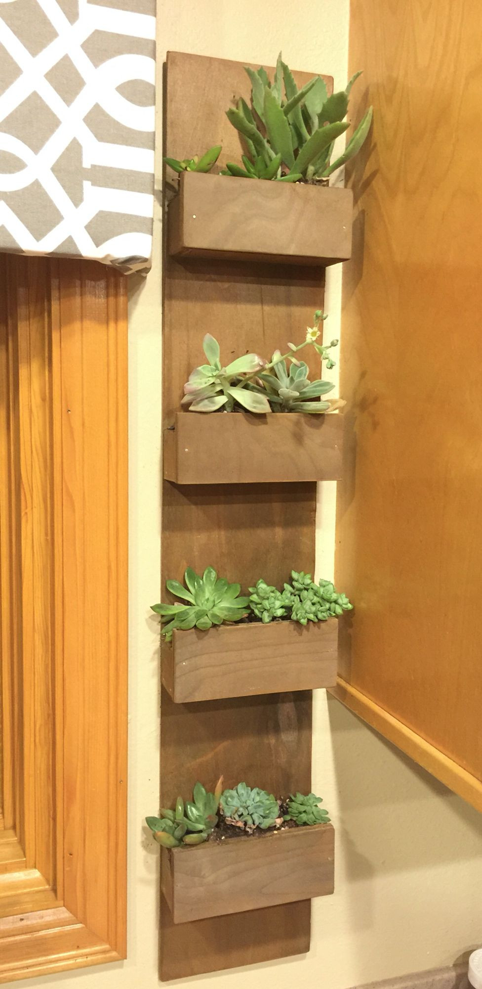 Best ideas about DIY Succulent Wall . Save or Pin DIY hanging succulent garden wall Now.