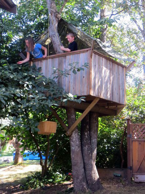 Best ideas about DIY Treehouse Plans Free . Save or Pin Best 25 Simple tree house ideas on Pinterest Now.