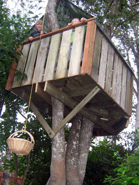 Best ideas about DIY Treehouse Plans Free . Save or Pin How to build a treehouse Now.