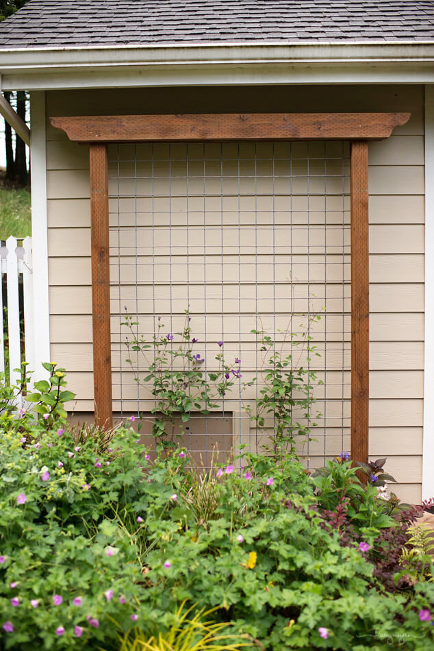 Best ideas about DIY Trellis Plans . Save or Pin 24 Best DIY Garden Trellis Projects Ideas and Designs Now.