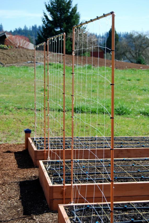 Best ideas about DIY Trellis Plans . Save or Pin Copper Trellis Plan Now.