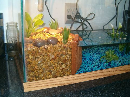 Best ideas about DIY Turtle Tank . Save or Pin Turtle tank The basking area Dana Lane Now.