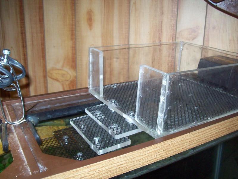 Best ideas about DIY Turtle Tank . Save or Pin DIY Turtle Basking Box petdiys Now.