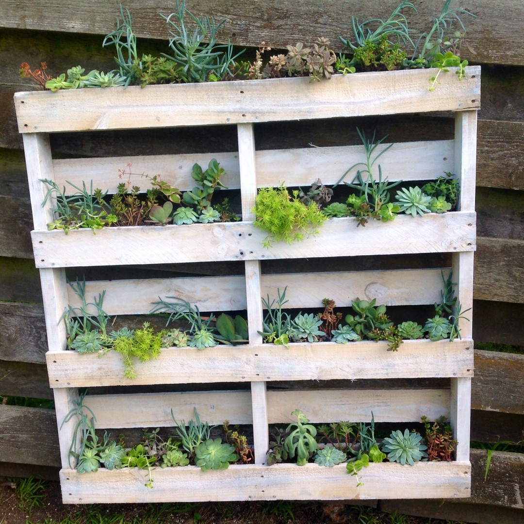 Best ideas about DIY Wall Planter . Save or Pin DIY Pallet Wall Planter Now.