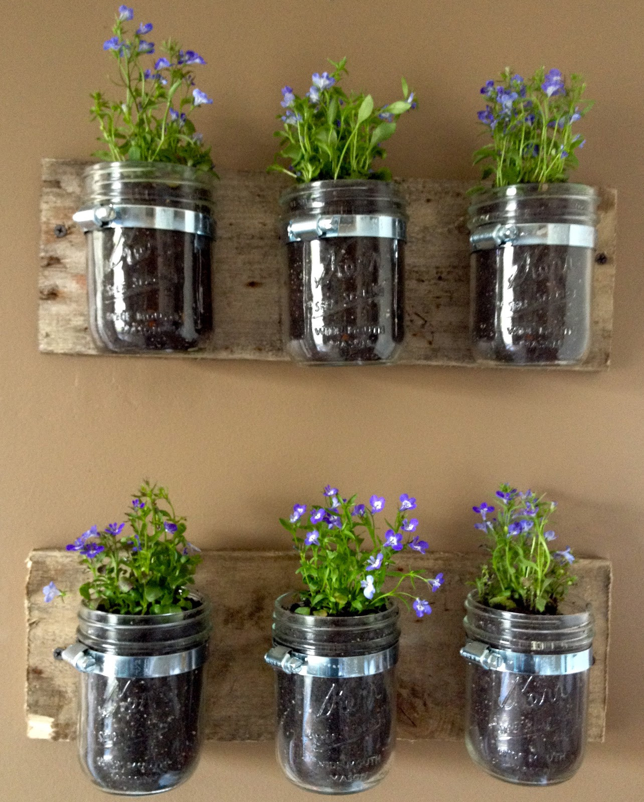 Best ideas about DIY Wall Planter . Save or Pin DIY Hanging Wall Planters from Mason Jars Now.