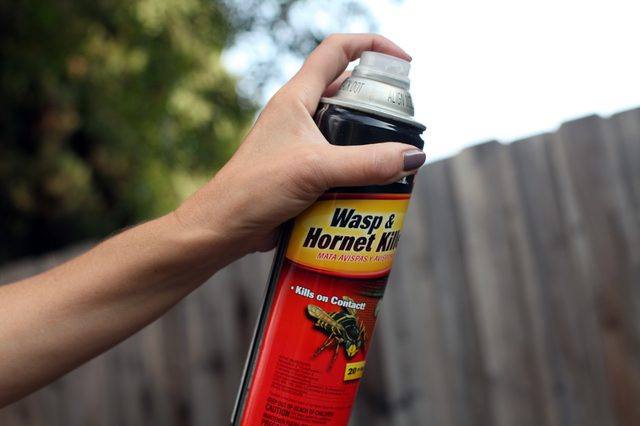 Best ideas about DIY Wasp Killer . Save or Pin Homemade Wasp Spray with Now.