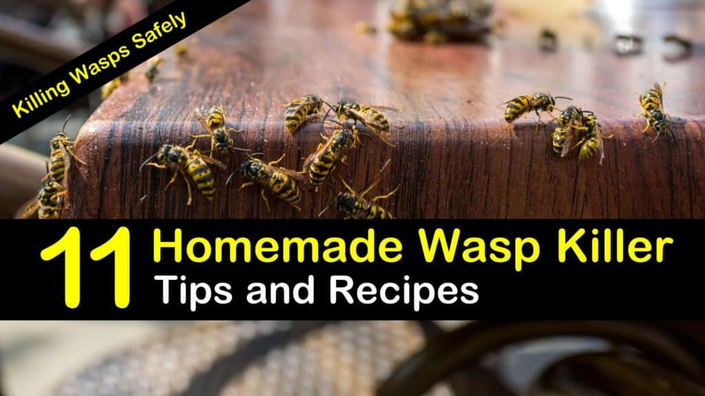 Best ideas about DIY Wasp Killer . Save or Pin Killing Wasps Safely 11 Homemade Wasp Killer Tips and Now.