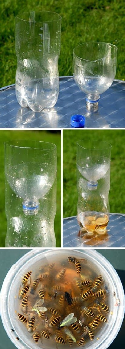 Best ideas about DIY Wasp Killer . Save or Pin Wasp traps Wasp and How to make on Pinterest Now.