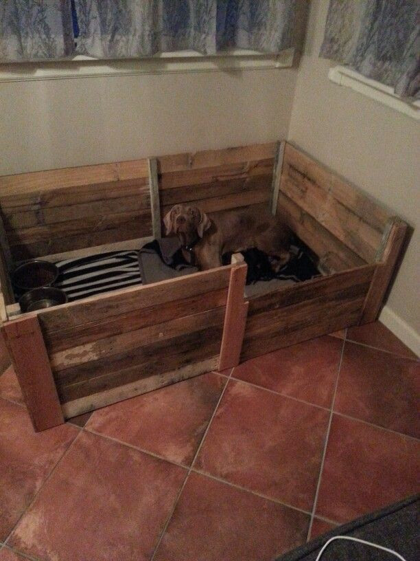 Best ideas about DIY Whelping Box . Save or Pin 25 Best Ideas about Whelping Box on Pinterest Now.