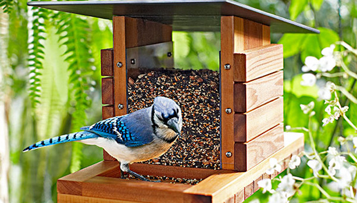 Best ideas about DIY Wooden Bird Feeder . Save or Pin Craftionary Now.