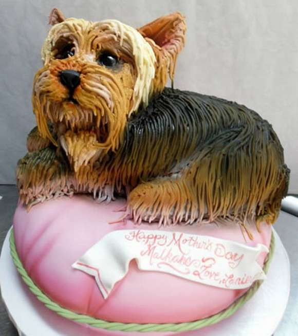 Best ideas about Dog Birthday Cake . Save or Pin Red Baiduri Dog Birthday Party Cakes Now.