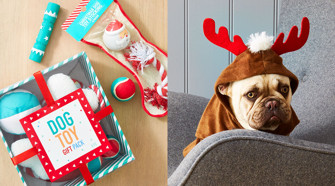 Best ideas about Dog Christmas Gift Ideas . Save or Pin christmas ts for pets Kmart Now.