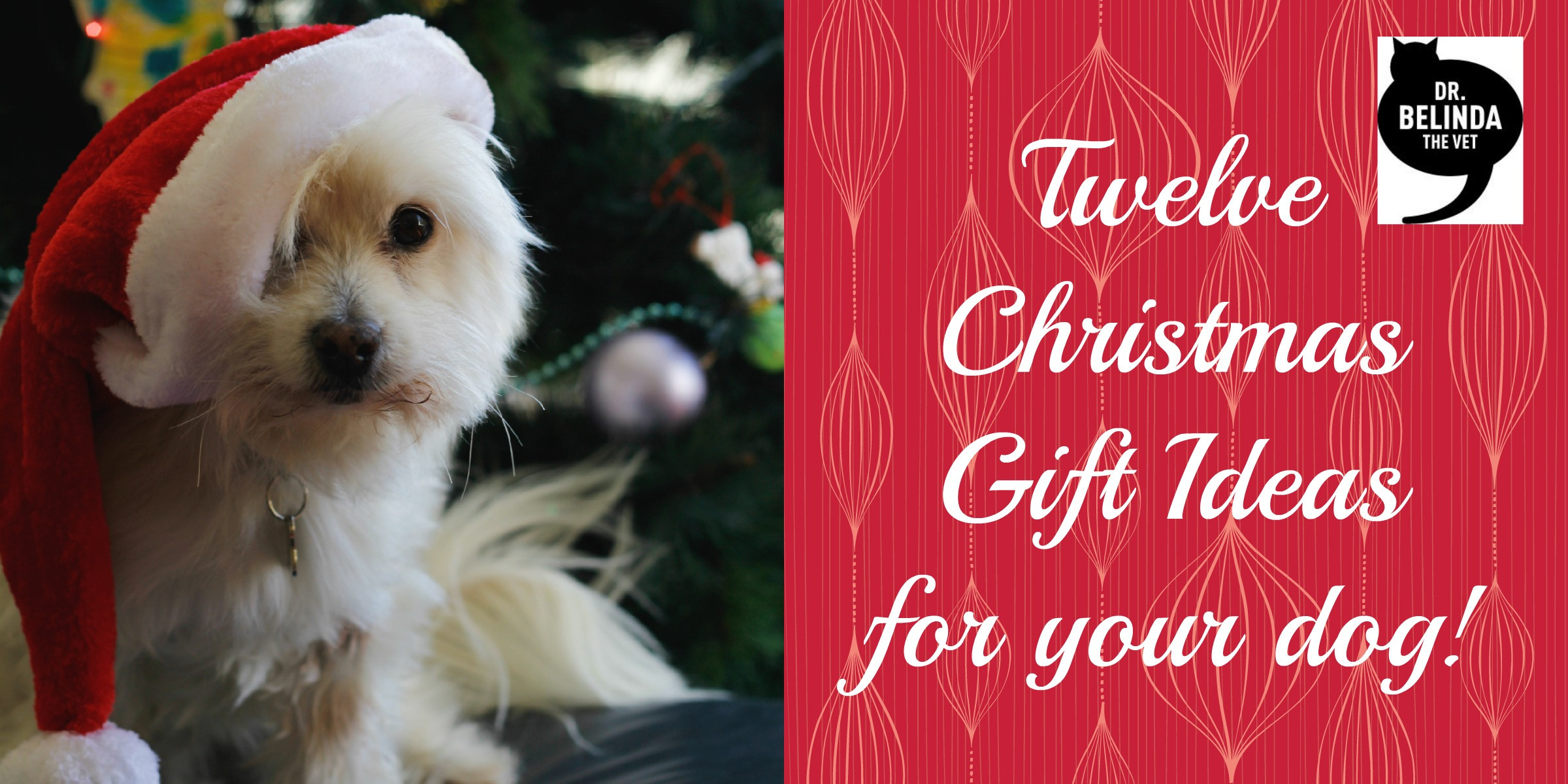 Best ideas about Dog Christmas Gift Ideas . Save or Pin 12 Christmas t ideas for your dog Dr Belinda The Vet Now.