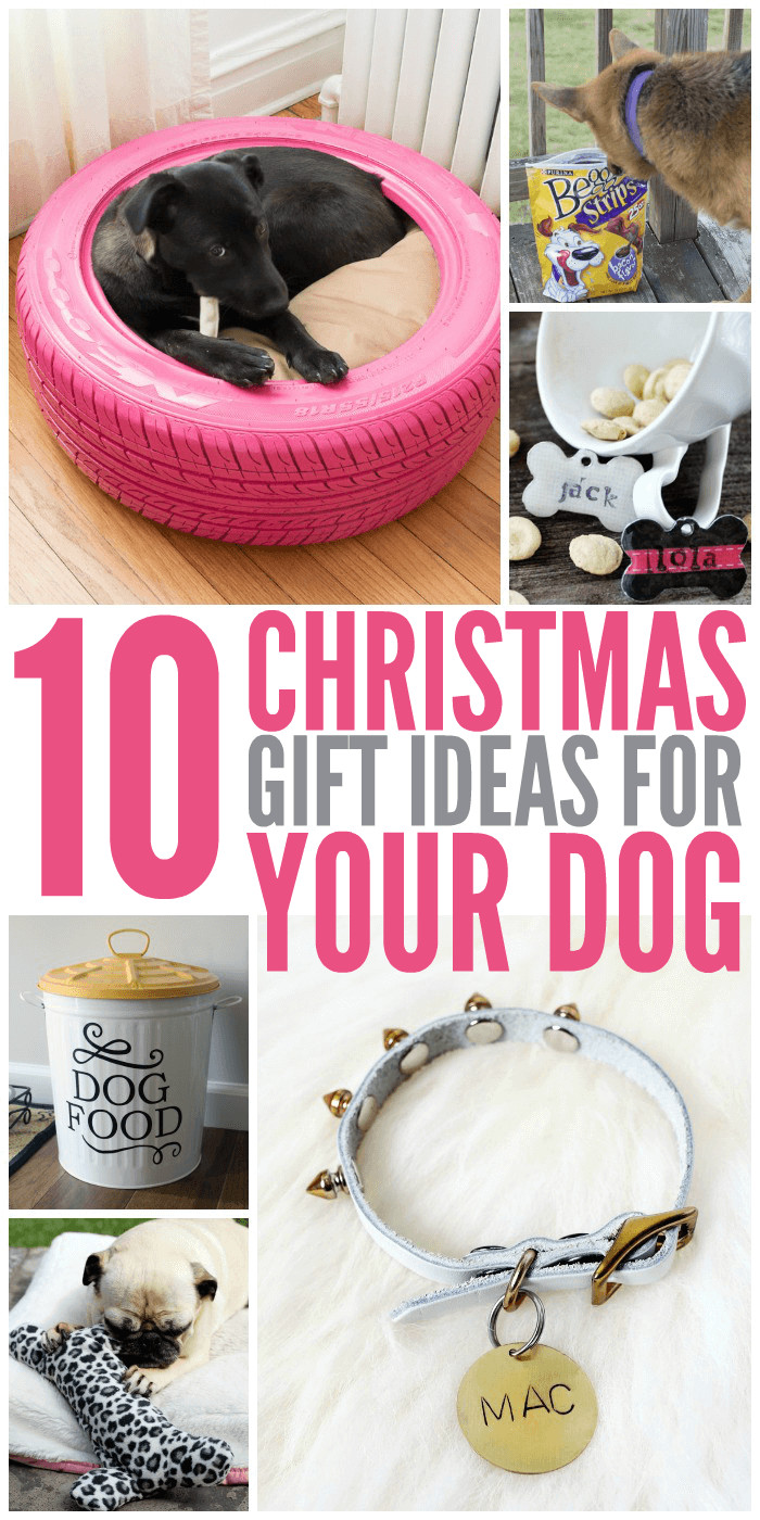 Best ideas about Dog Christmas Gift Ideas . Save or Pin 10 Christmas Gift Ideas for Your Dog Glue Sticks and Now.