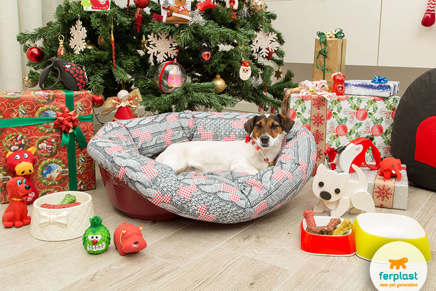 Best ideas about Dog Christmas Gift Ideas . Save or Pin Great ideas for Christmas ts for the dog LOVE FERPLAST Now.