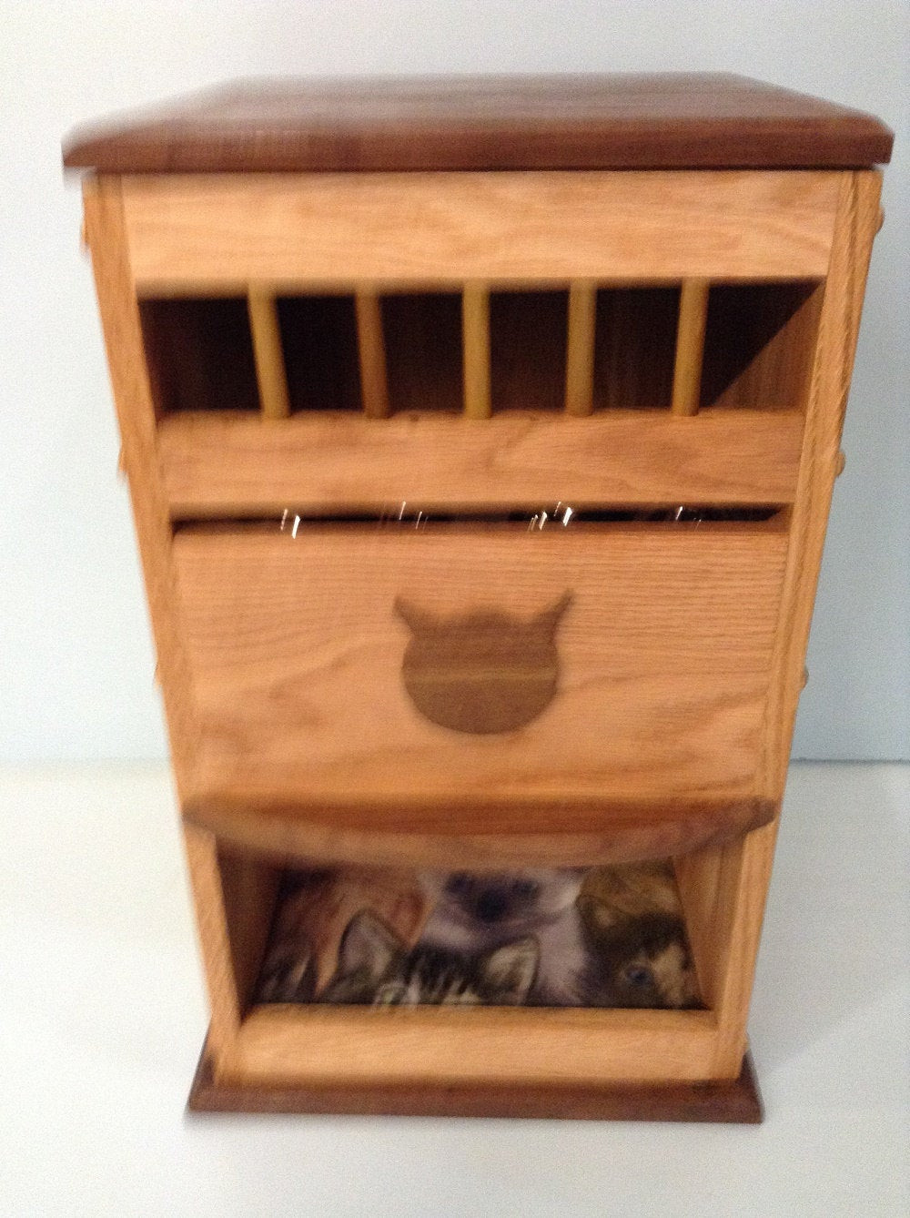 Best ideas about Dog Proof Cat Feeder DIY . Save or Pin DELUXE DOG proof CAT feeder bed Now.