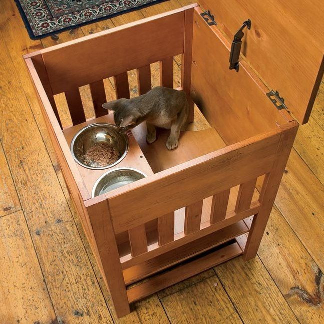 Best ideas about Dog Proof Cat Feeder DIY . Save or Pin 1174 best images about Pet Stuff DIY on Pinterest Now.
