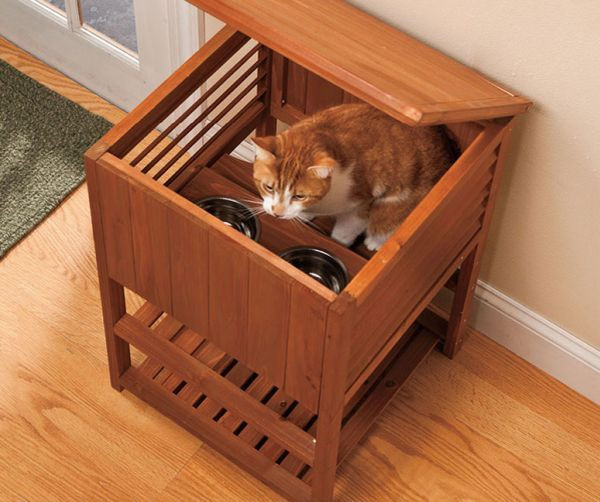 Best ideas about Dog Proof Cat Feeder DIY . Save or Pin Best 25 Cat feeding ideas on Pinterest Now.