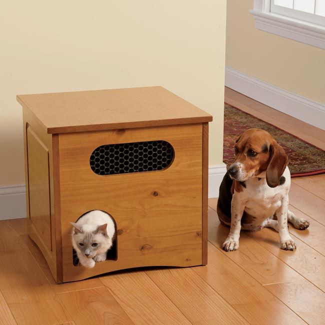 Best ideas about Dog Proof Cat Feeder DIY . Save or Pin Cat feeding Cat feeder and Cats on Pinterest Now.