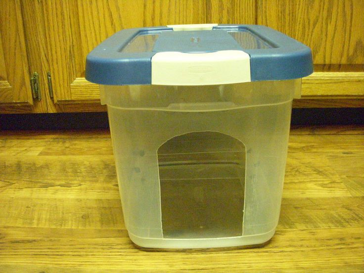 Best ideas about Dog Proof Cat Feeder DIY . Save or Pin Homemade Dog proof cat feeder I with my hubby s Now.