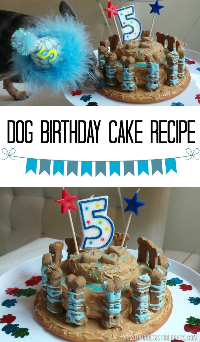 Best ideas about Doggie Birthday Cake . Save or Pin Dog Birthday Cake Recipe for Chuy's 5th Birthday Now.