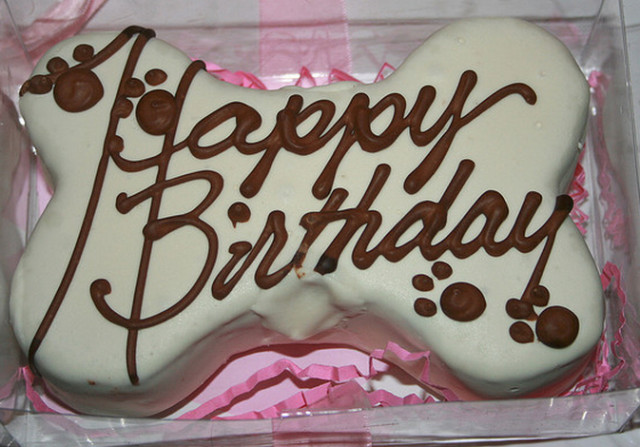 Best ideas about Doggie Birthday Cake . Save or Pin Doggie Birthday Cakes B Lovely Events Now.