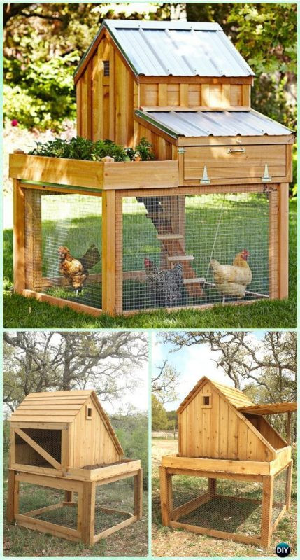 Best ideas about Easy DIY Chicken Coop Plans . Save or Pin 61 DIY Chicken Coop Plans That Are Easy to Build Free Now.