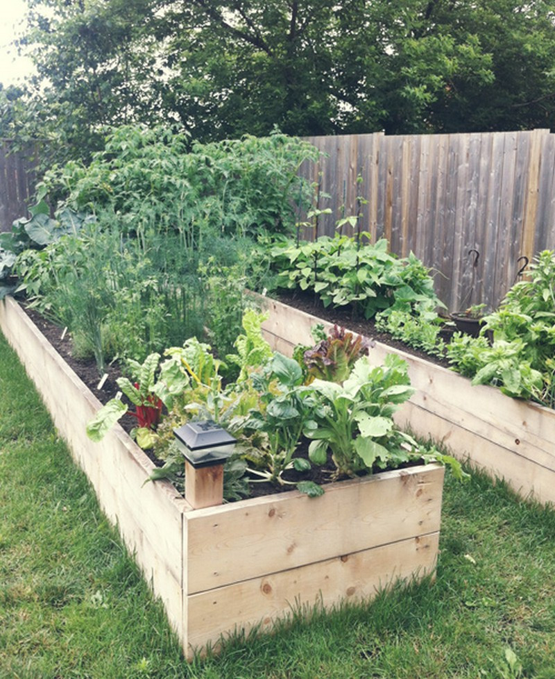 Best ideas about Easy DIY Raised Garden Bed . Save or Pin DIY Easy Access Raised Garden Bed Now.