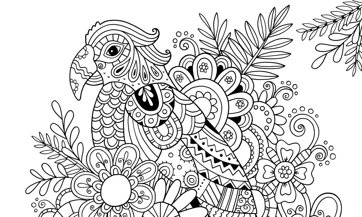 Best ideas about Easy Printable Coloring Pages For Adults . Save or Pin How to Draw Zentangle Patterns Hobbycraft Blog Now.