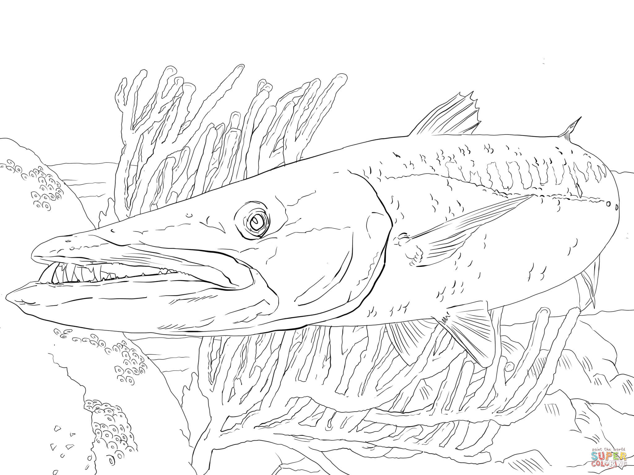 Best ideas about Fishing Printable Coloring Pages . Save or Pin Barracuda Fish coloring page Now.