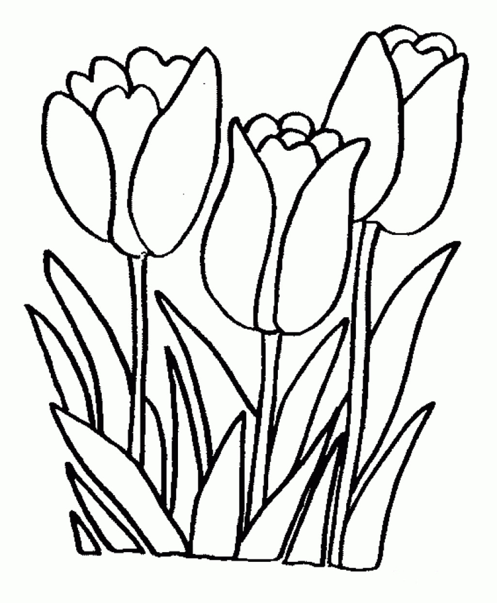 Best ideas about Flower Coloring Sheets For Girls . Save or Pin Coloring Pages Flower Coloring Pages For Girls And Now.